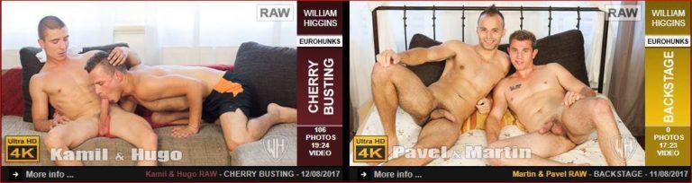 WilliamHigginsLatestGayPornScenes1 768x204 - Gay porn site William Higgins wins 5 star review